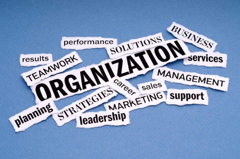 Business-Organization.jpg